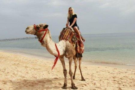 Как не стать обманутым туристом?