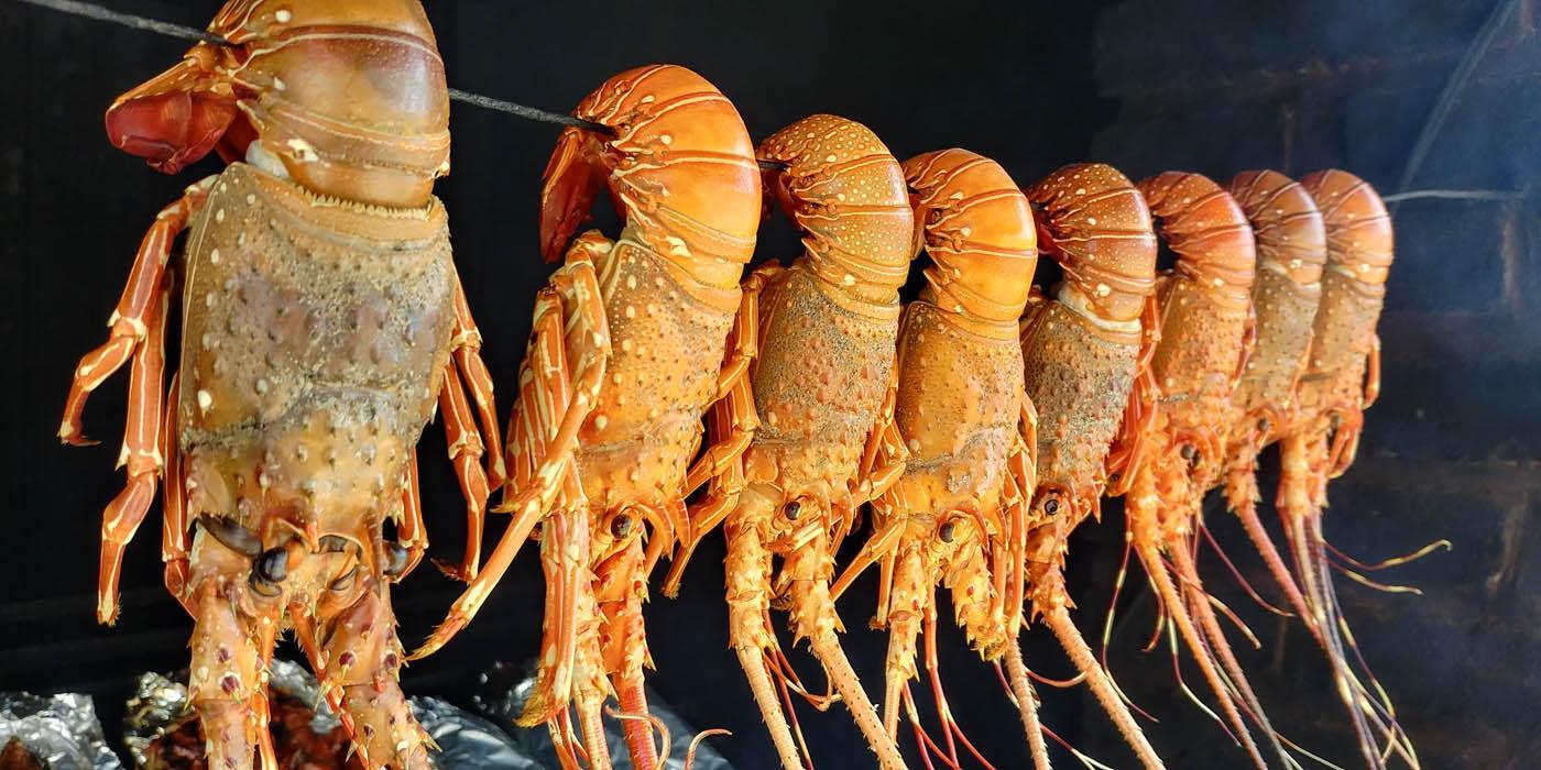 Необычные деликатесы из живых существ