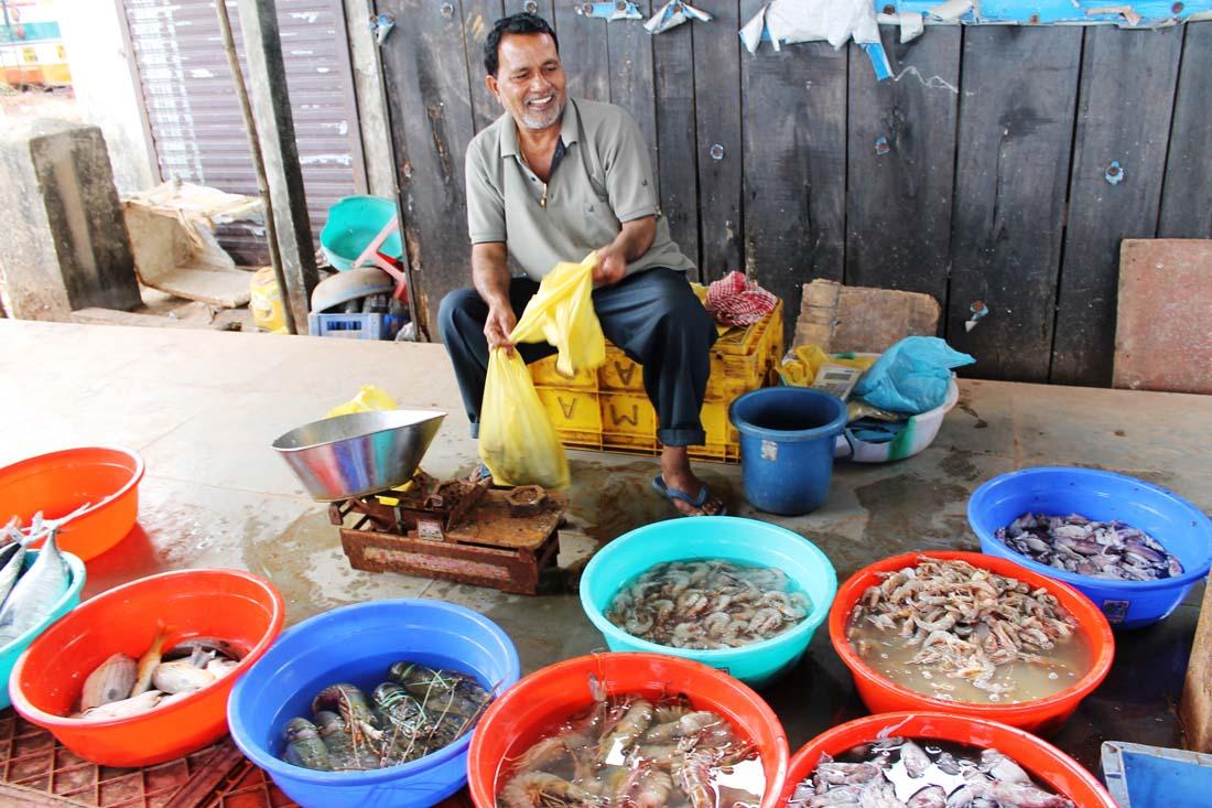 Photo of Чем заняться на зимовке в Гоа: о пище духовной и не только