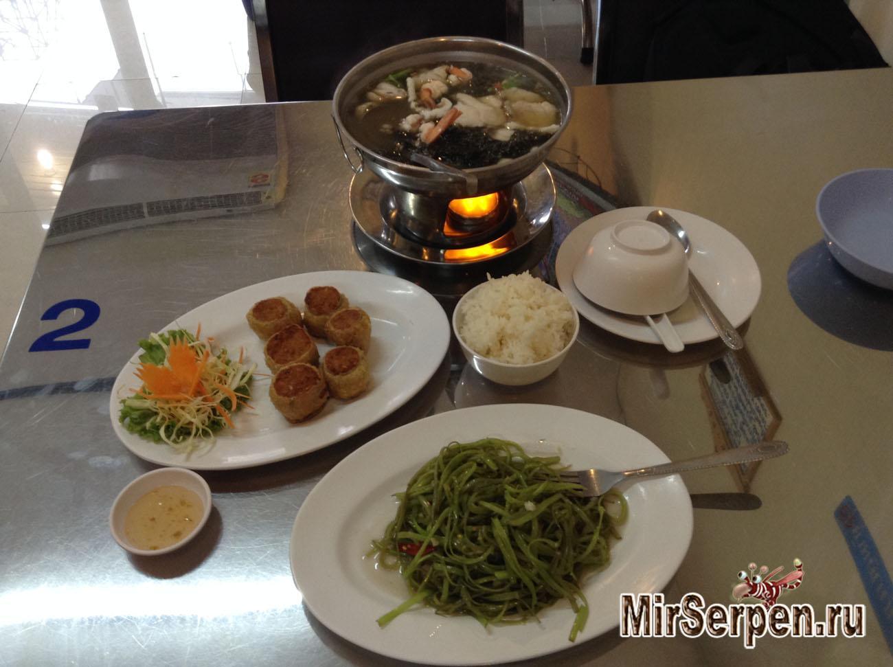 Чем питаться в Китае, если не хочется есть змей, жаб и насекомых?