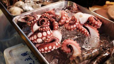 Photo of Самые опасные блюда мира