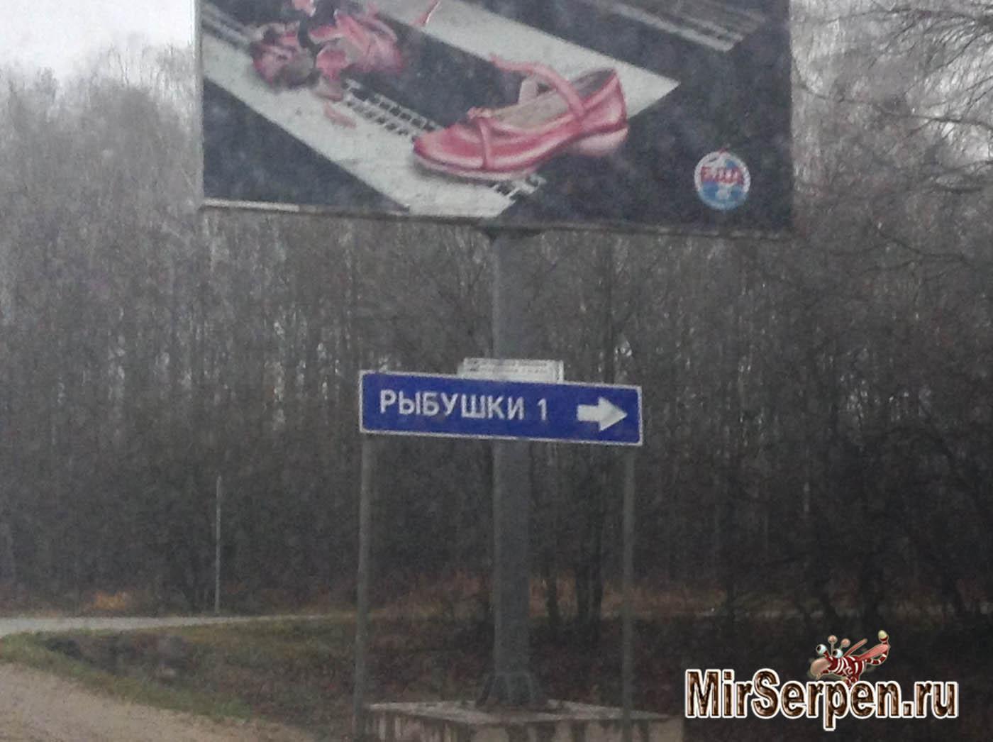Деревня Рыбушки, Московская область, Россия