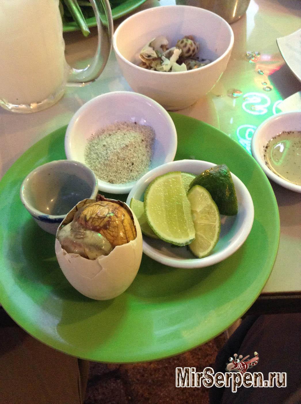 Photo of Я реально съел это: Яйца с утиными зародышами во Вьетнаме