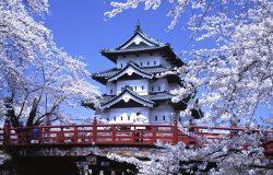 Япония: полезные страницы в Сети