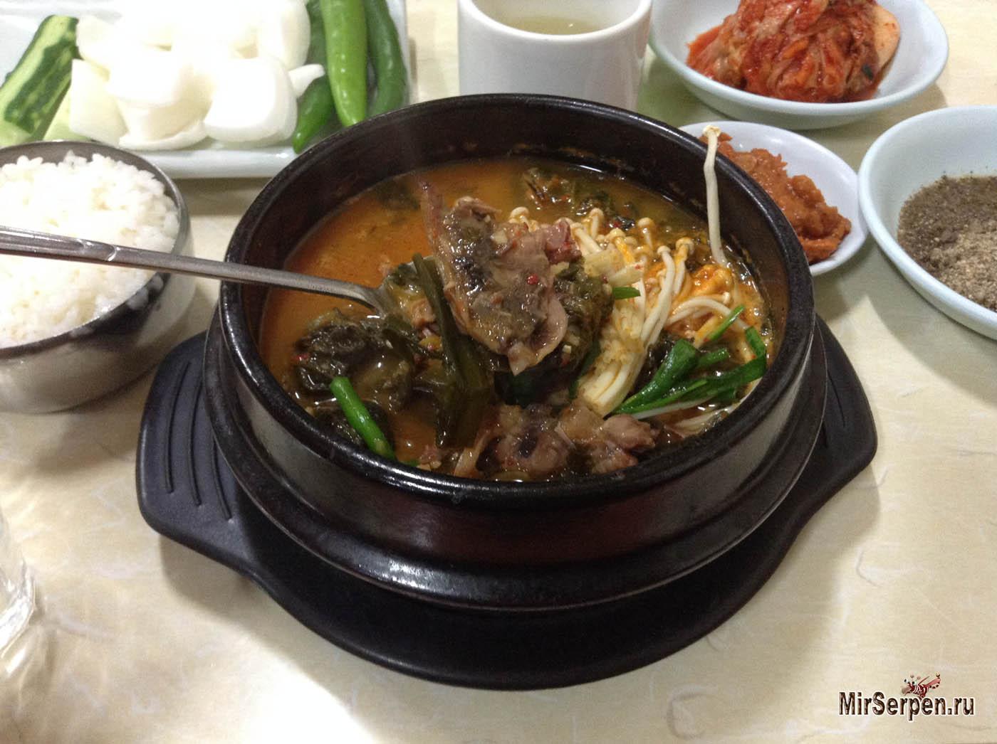 Знаменитый корейский суп с собакой