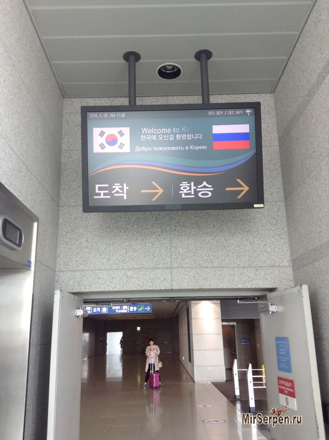 Сколько стоило посещение Южной Кореи весной 2016