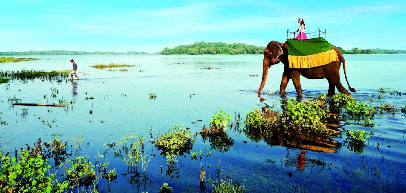 Photo of Плюсы и минусы Шри Ланки