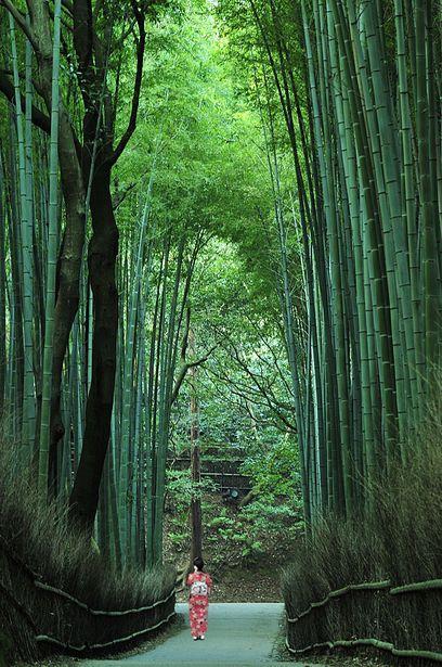 О характере японцев: взаимопонимание без слов