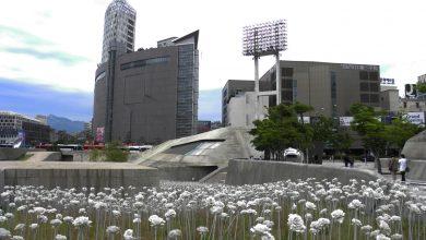 Photo of Планирование поездки в Южную Корею: Галопом по Корее