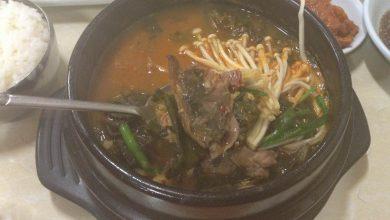 Photo of Кухня Южной Кореи: Мифы про вкусных собачек