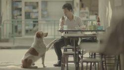 Тайская социальная реклама
