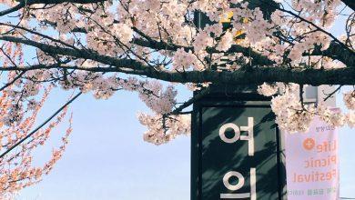 Photo of Корейские пословицы