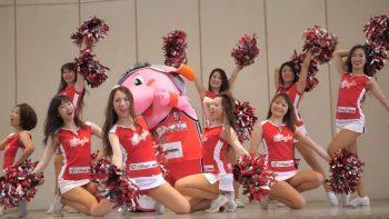 Выступление японских чирлидерш из STARJETS